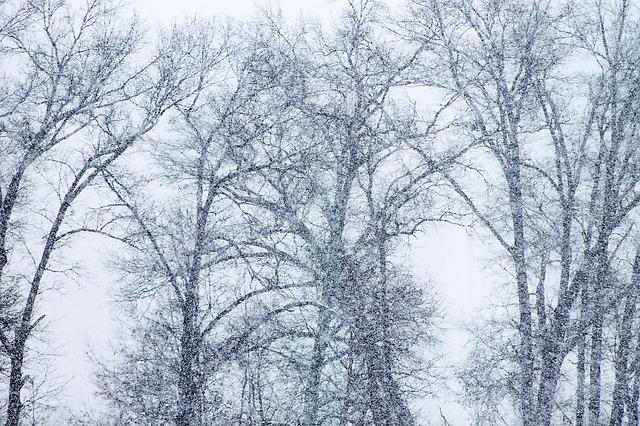 blizzard-1144177_640