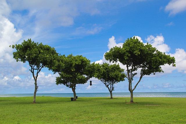 hawaii-1538006_640