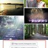 タイムラインの写真の下にソーシャルリンクやウェブサイトを設定する方法